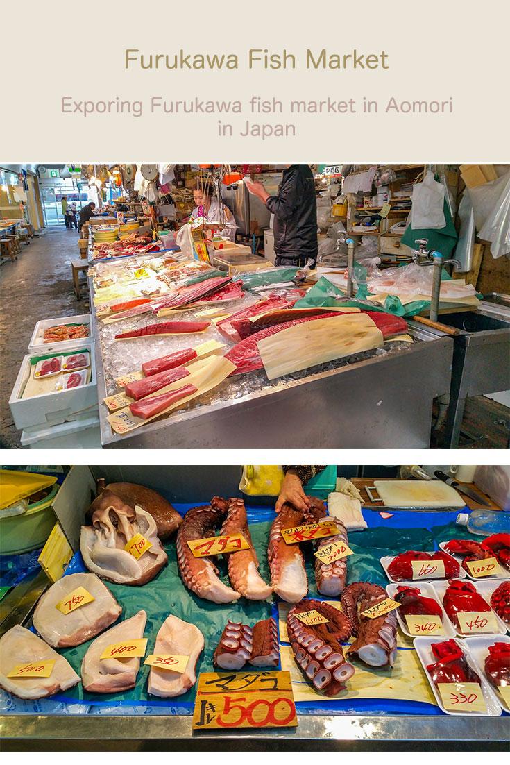 Exploring Furukawa fish market