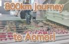 Train from Kanazawa to Aomori